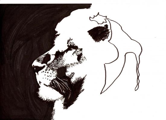 Aslan by HelenaFan